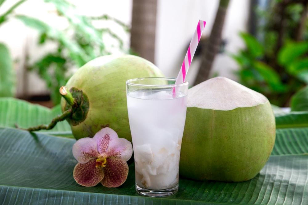 mincir avec l'eau de coco